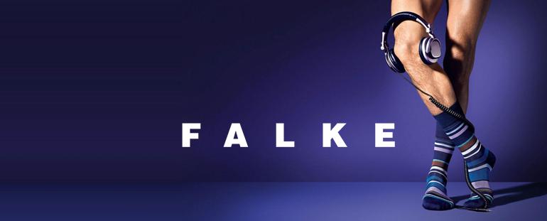 teaser_falke
